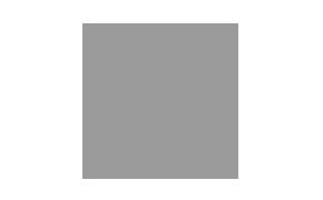 argenesi-logo